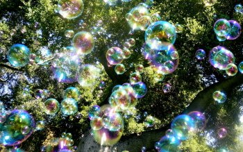 Photography - Bubble Wallpapers and Backgrounds ID : 165998