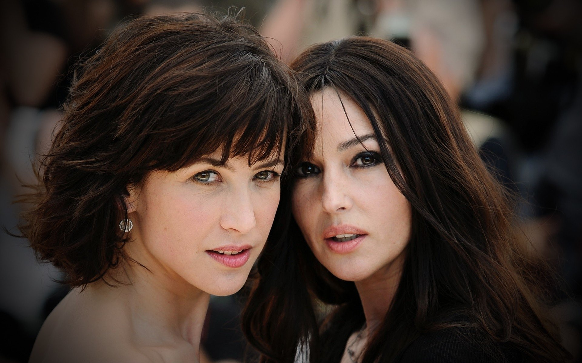 Celebrity - Actor  Sophie Marceau Monica Bellucci Actress Wallpaper