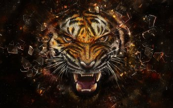Artistic - Animal Wallpapers and Backgrounds ID : 168536