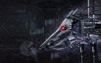 Sci Fi - Cyborg Wallpapers and Backgrounds ID : 16984