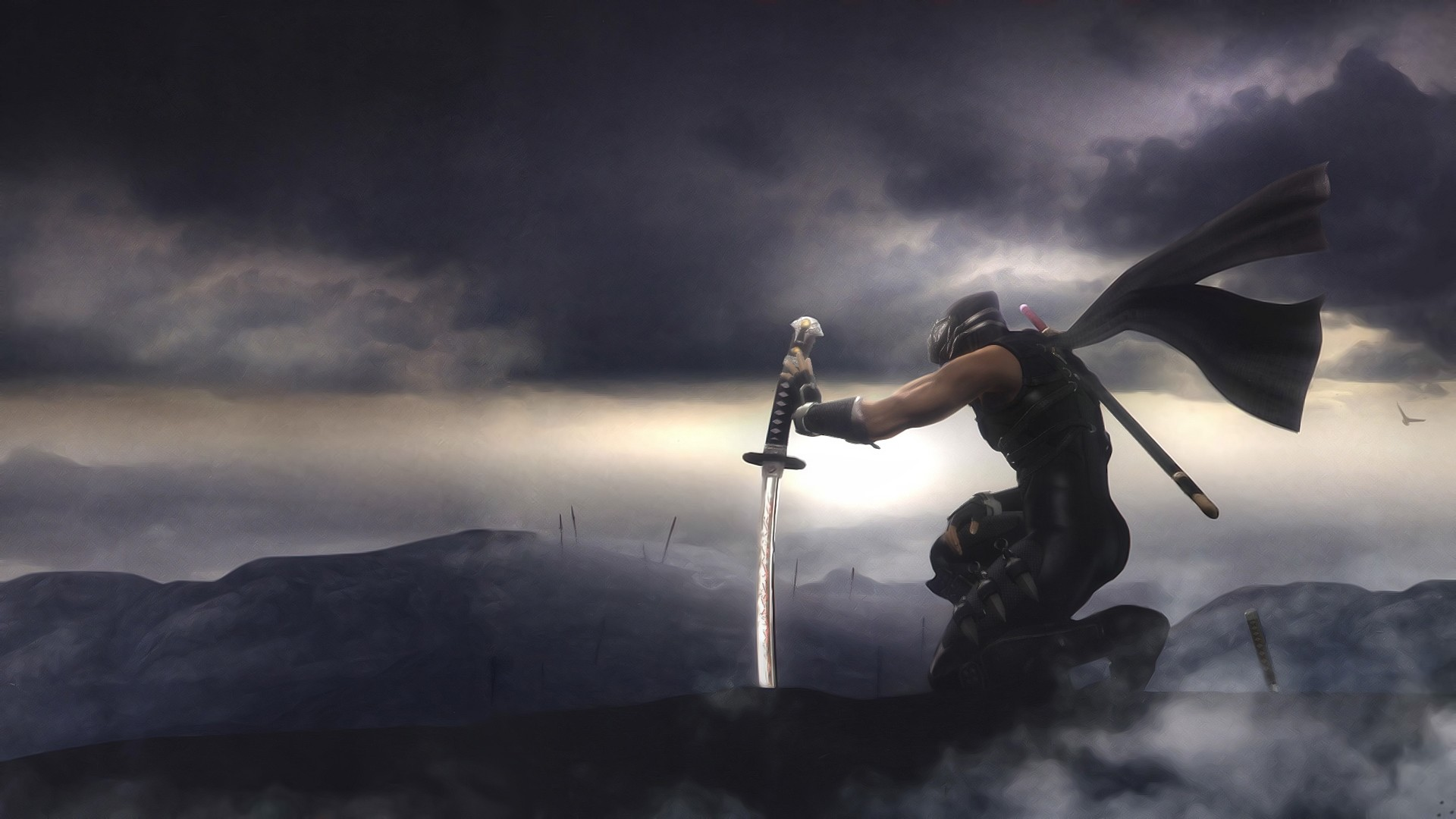 ninja gaiden wallpapers for desktop - photo #5