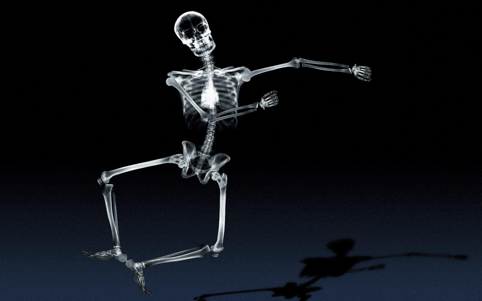 Xray Music Wallpapers: Skeleton HD Wallpaper