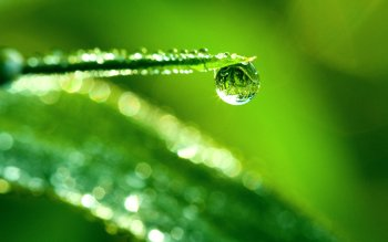 Earth - Water Drop Wallpapers and Backgrounds ID : 177168