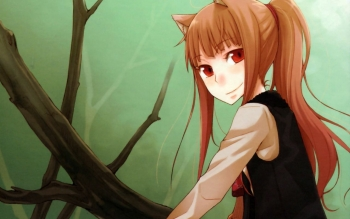 Anime - Spice And Wolf Wallpapers and Backgrounds ID : 177304