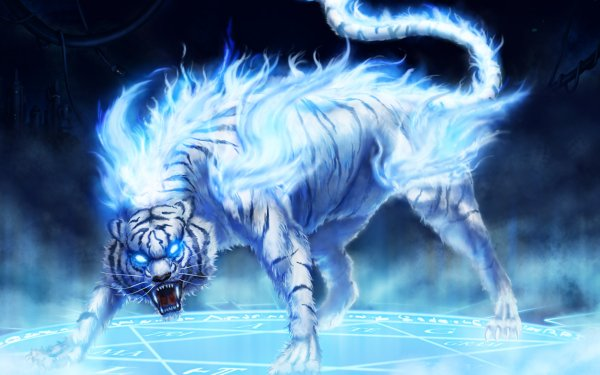 Oscuro Animales Tigre Fondo de pantalla HD | Fondo de Escritorio