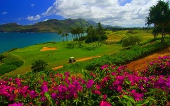 84 Golf Hd Wallpapers Background Images Wallpaper Abyss