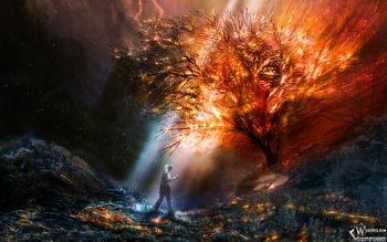 Fantasy - Artistic Wallpapers and Backgrounds ID : 178686