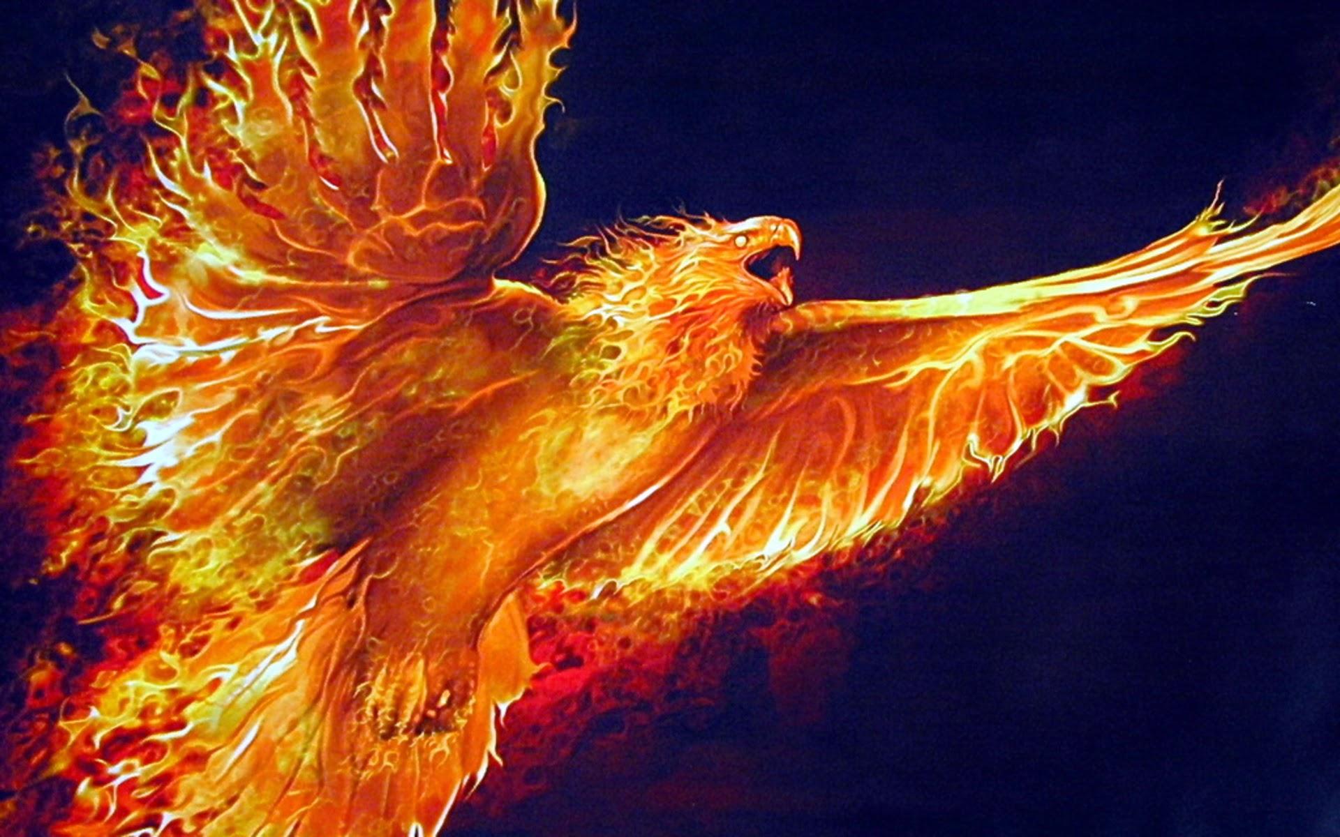 fire phoenix computer wallpapers desktop backgrounds
