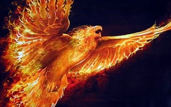 Fantasy - Phoenix Wallpapers and Backgrounds ID : 183774