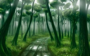 Fantasy - Forest Wallpapers and Backgrounds ID : 184484