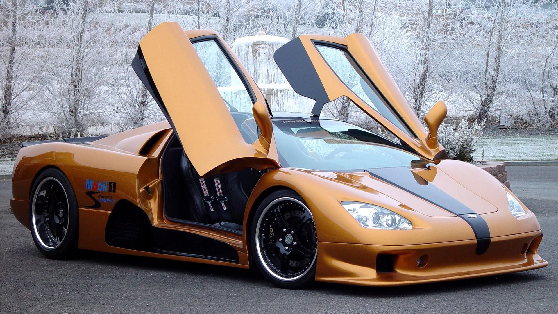 NO 3 FASTEST CARS IN THE WORLD