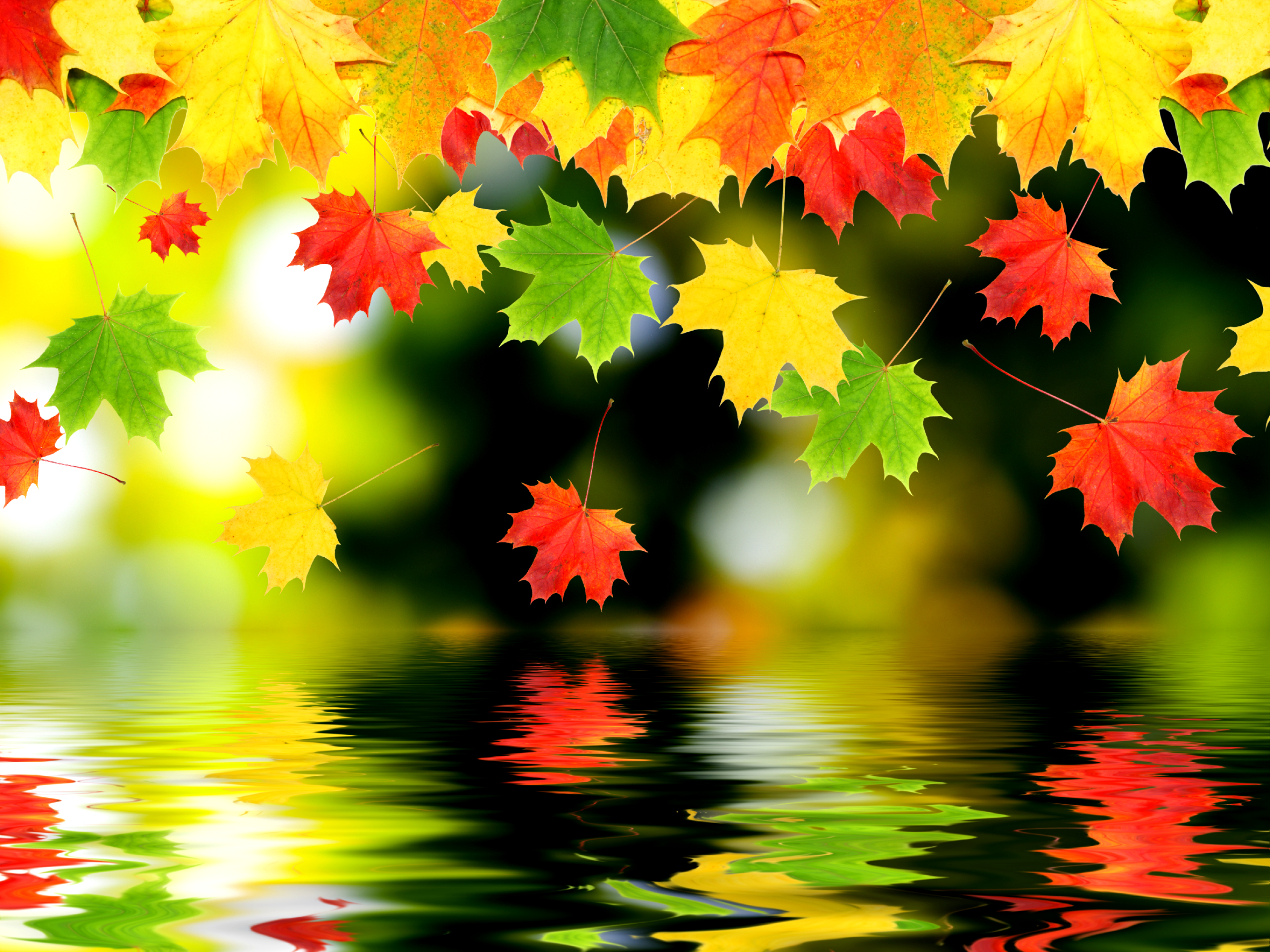 Earth - Autumn  Wallpaper