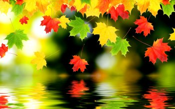 Earth - Autumn Wallpapers and Backgrounds ID : 188124