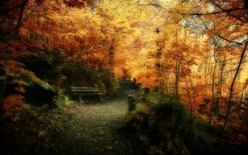 Earth - Autumn Wallpapers and Backgrounds ID : 189244