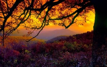 Earth - Landscape Wallpapers and Backgrounds ID : 191034
