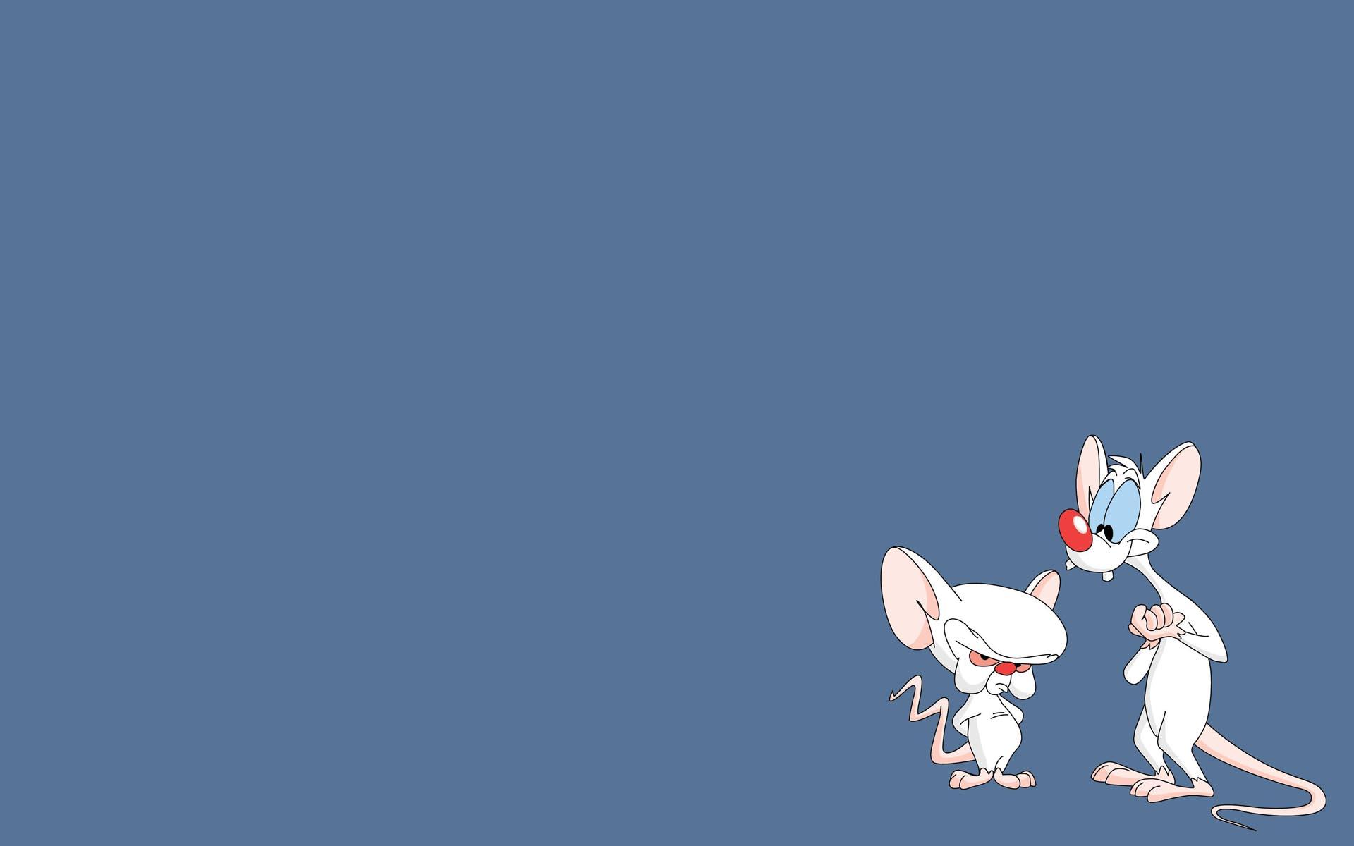 Pinky And The Brain HD Wallpaper | Background Image ...