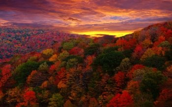 Earth - Autumn Wallpapers and Backgrounds ID : 197694