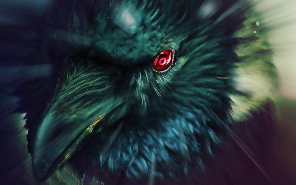 Anime Naruto Bird Raven Red Eyes Mangekyō Sharingan HD Wallpaper | Background Image