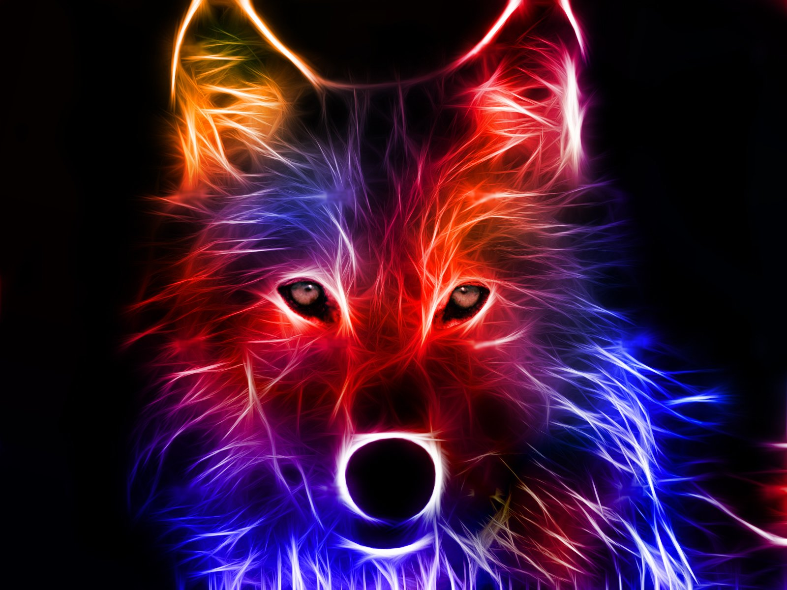 Animal - Wolf  Abstract Fractal Digital Colorful Wallpaper