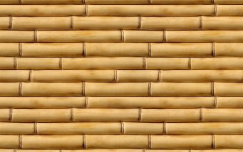 Tierra - Bamboo Wallpapers and Backgrounds ID : 200876