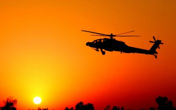 Military - Helicopter Wallpapers and Backgrounds ID : 20304