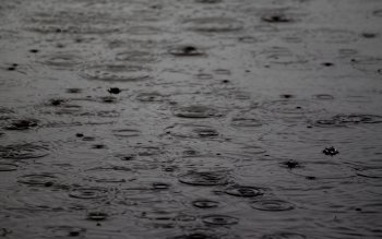 Fotografering - Rain Wallpapers and Backgrounds ID : 204008