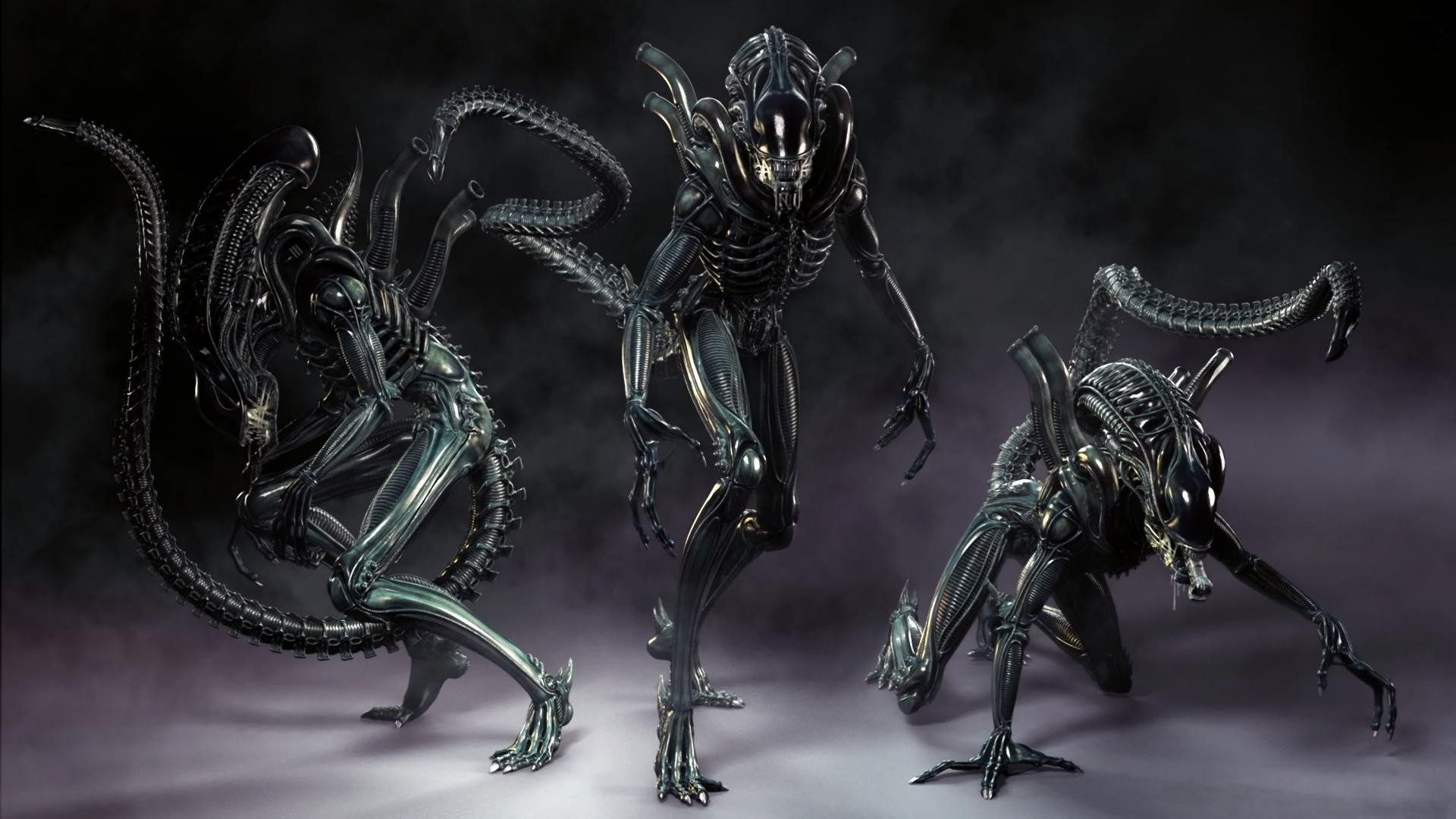 alien colonial marines computer wallpapers desktop