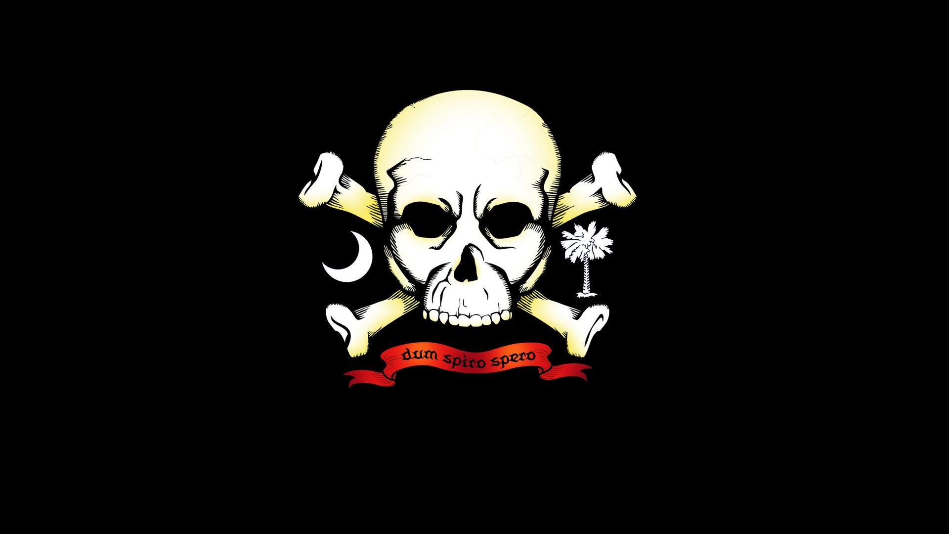 Skull And Bones Wallpaper: Skull HD Wallpaper