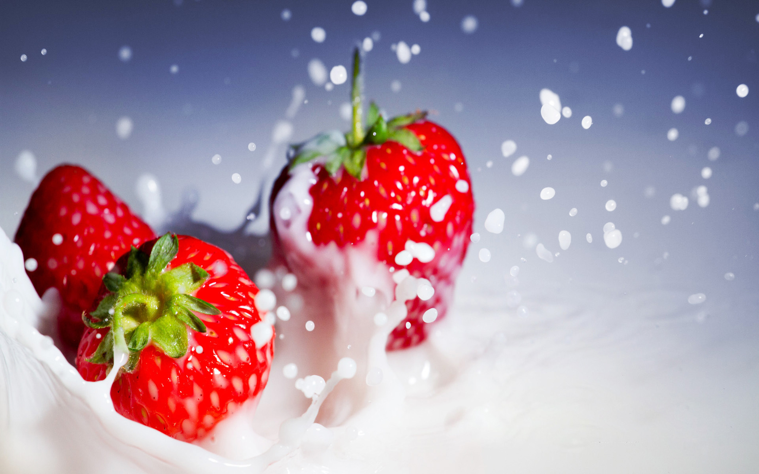 strawberry full hd wallpaper and background 2560x1600