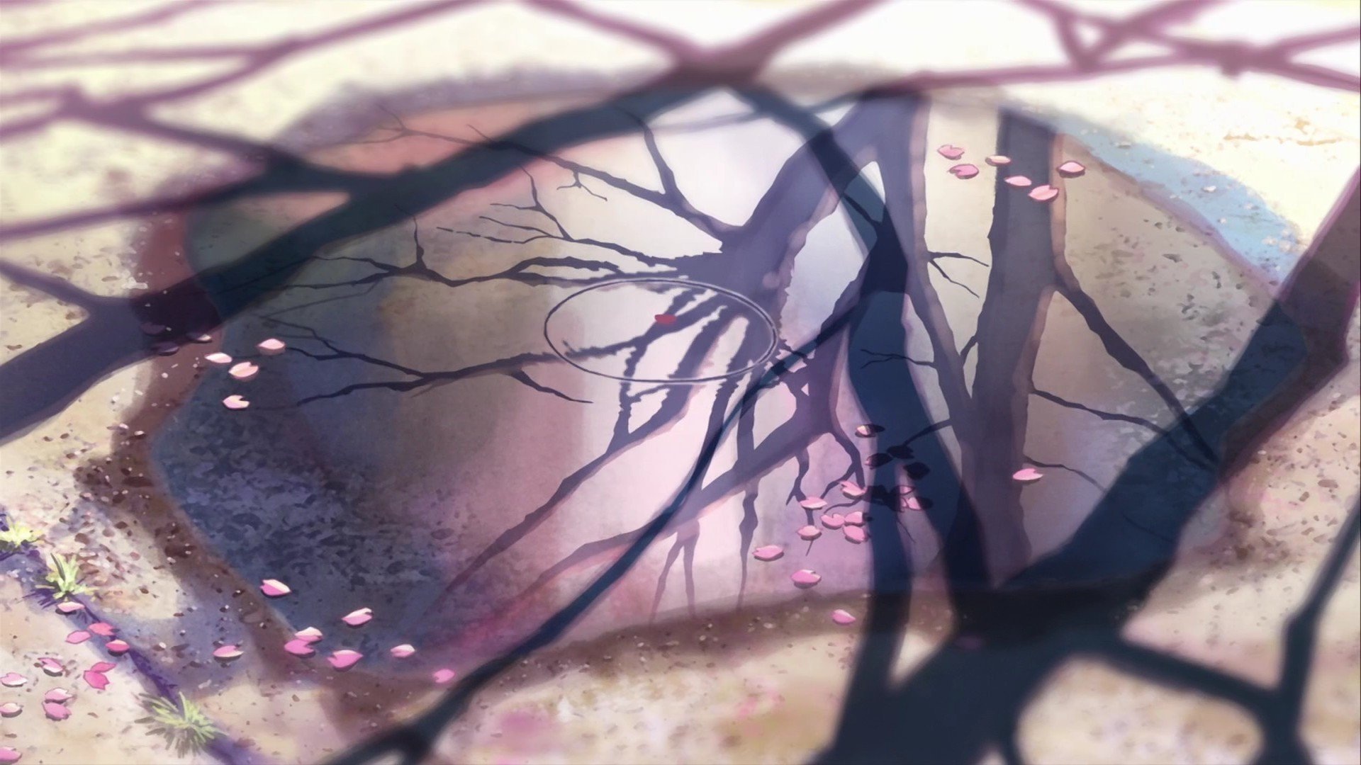 Anime - 5 Centimeters Per Second  Wallpaper