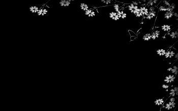 HD Wallpaper | Background ID:211554