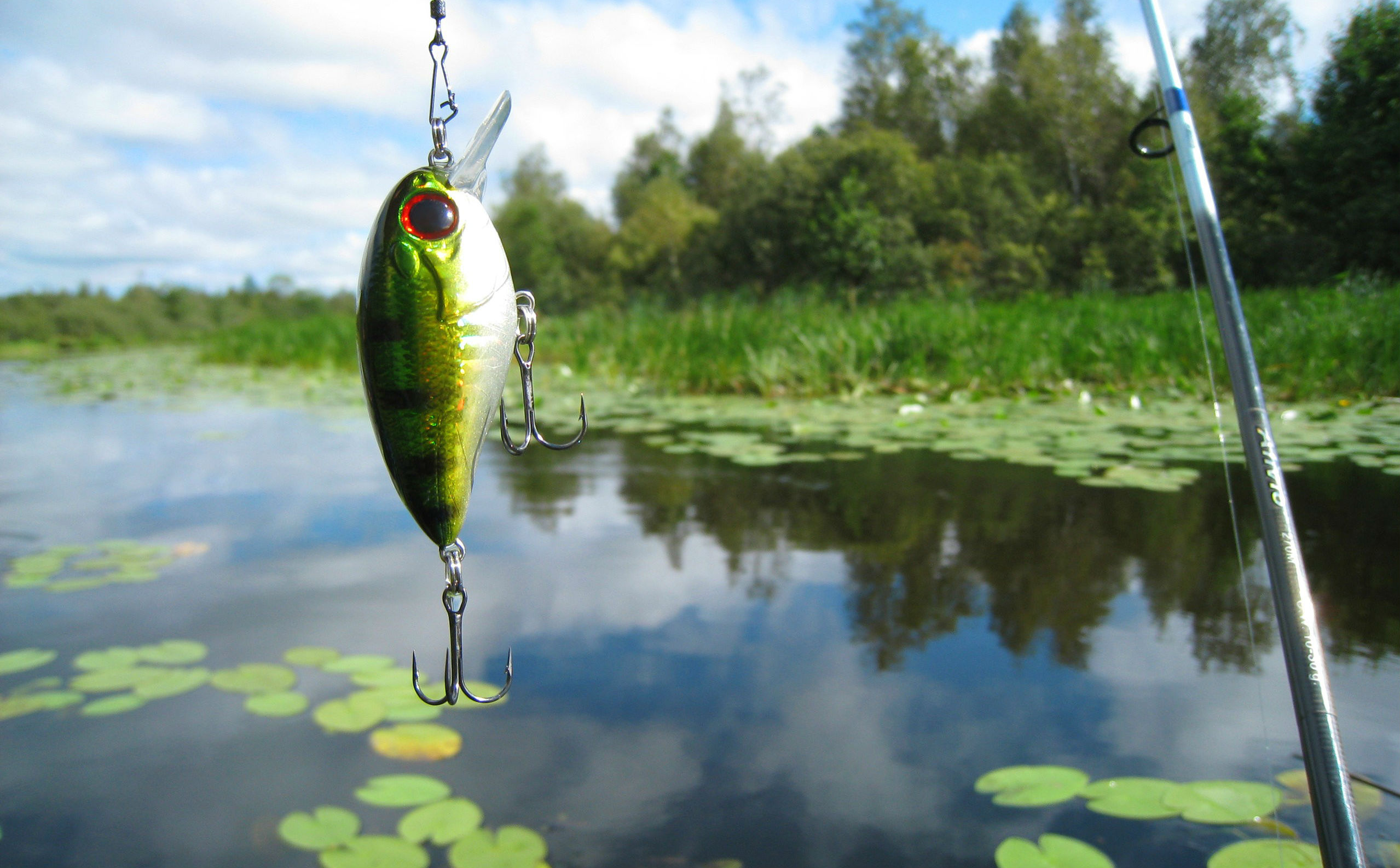 22 Fishing HD Wallpapers | Backgrounds - Wallpaper Abyss