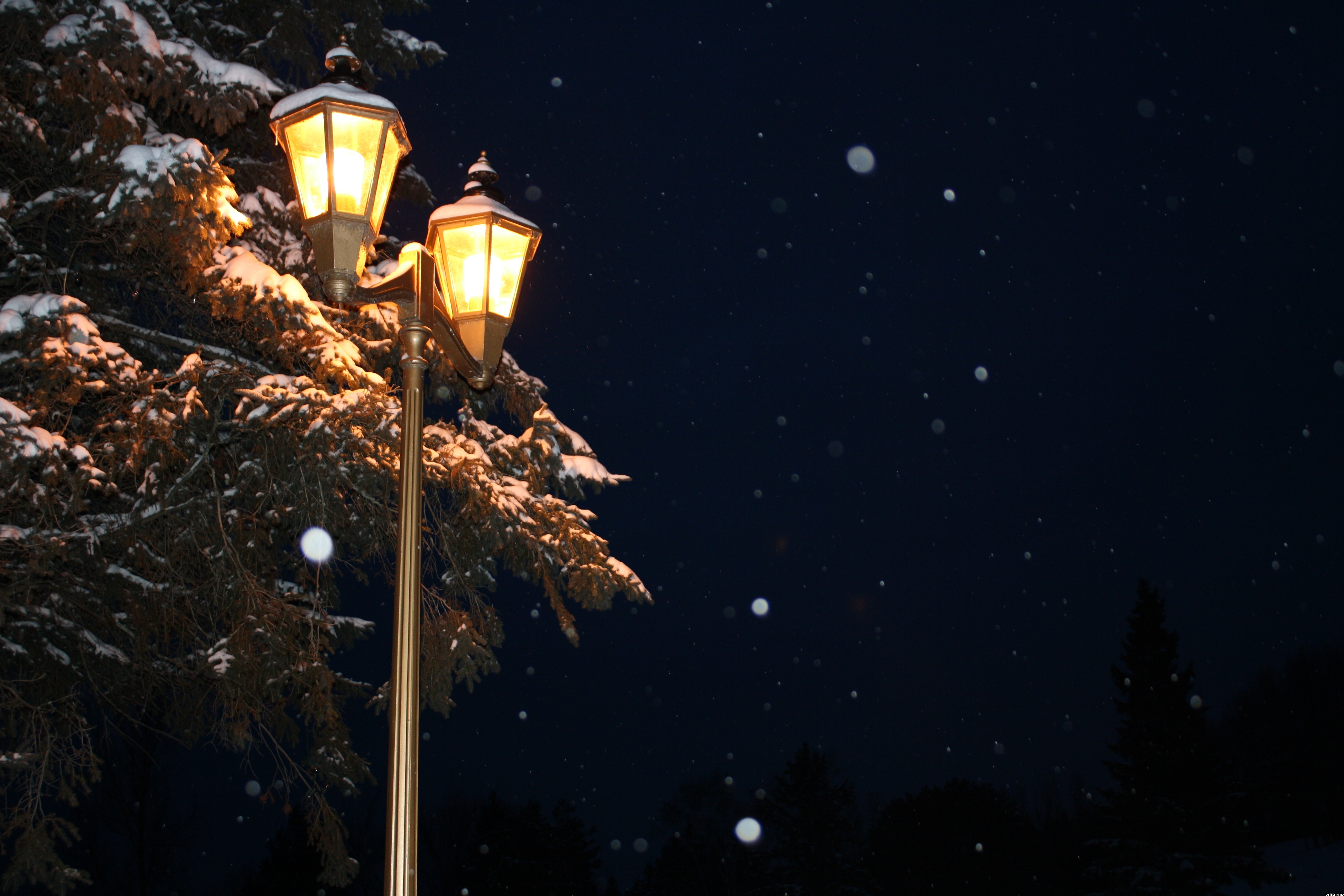 Lamp Post 4k Ultra Hd Wallpaper And Background Image