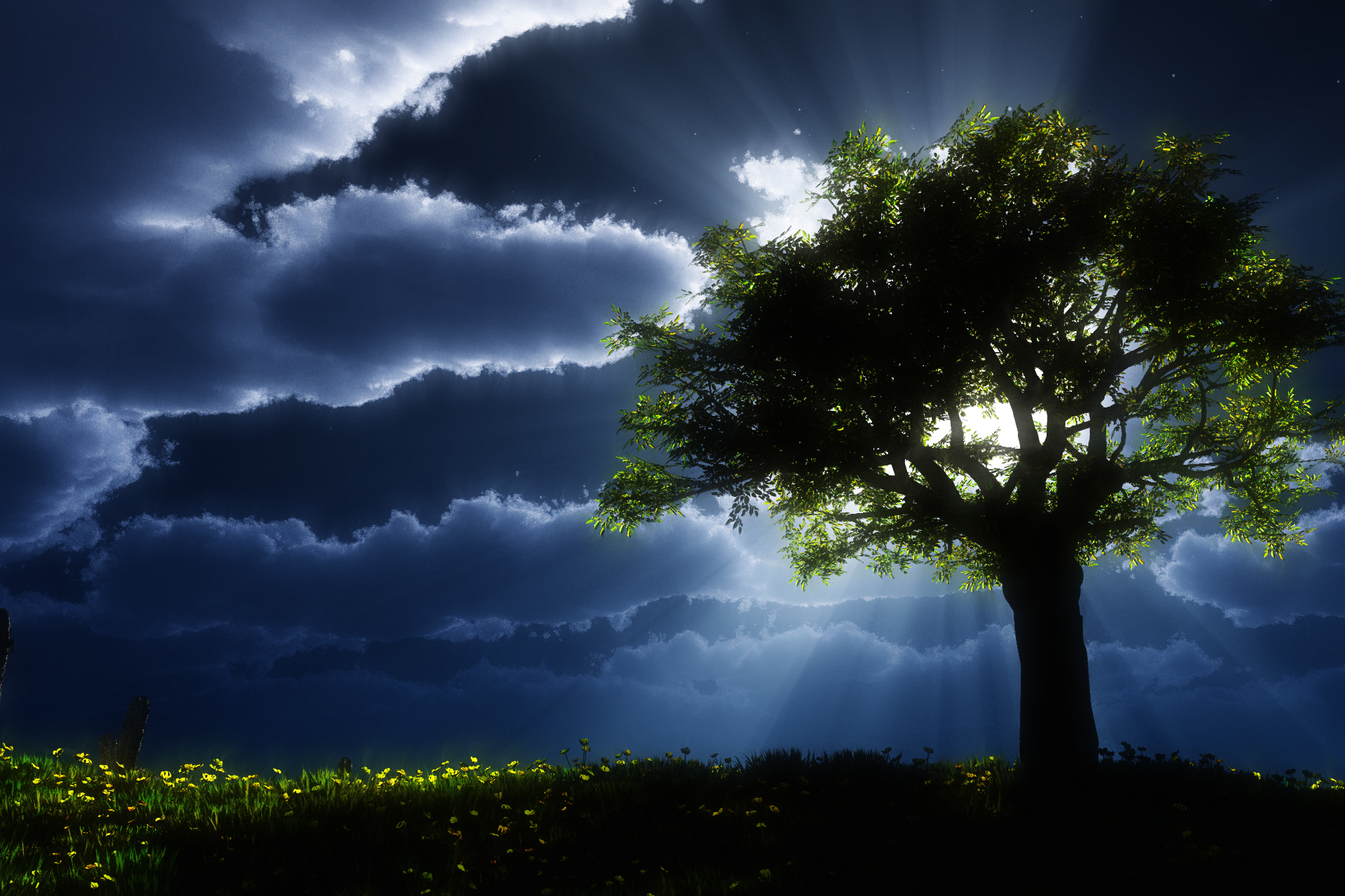 Dark Trees Hd Wallpapers: Nature HD Wallpaper