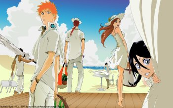 Anime - Bleach Wallpapers and Backgrounds ID : 219388