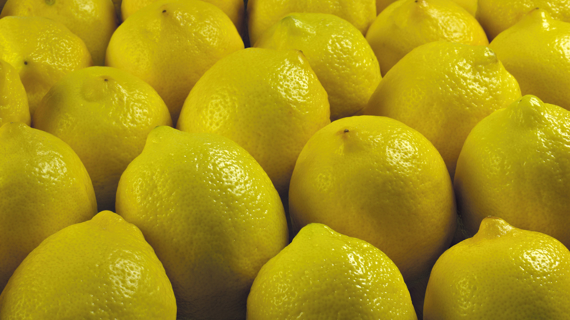 Lemon Computer Wallpapers, Desktop Backgrounds | 1920x1080 ...