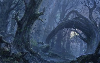 Fantasy - Forest Wallpapers and Backgrounds ID : 220544