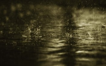 Fotografie - Rain Wallpapers and Backgrounds ID : 225916