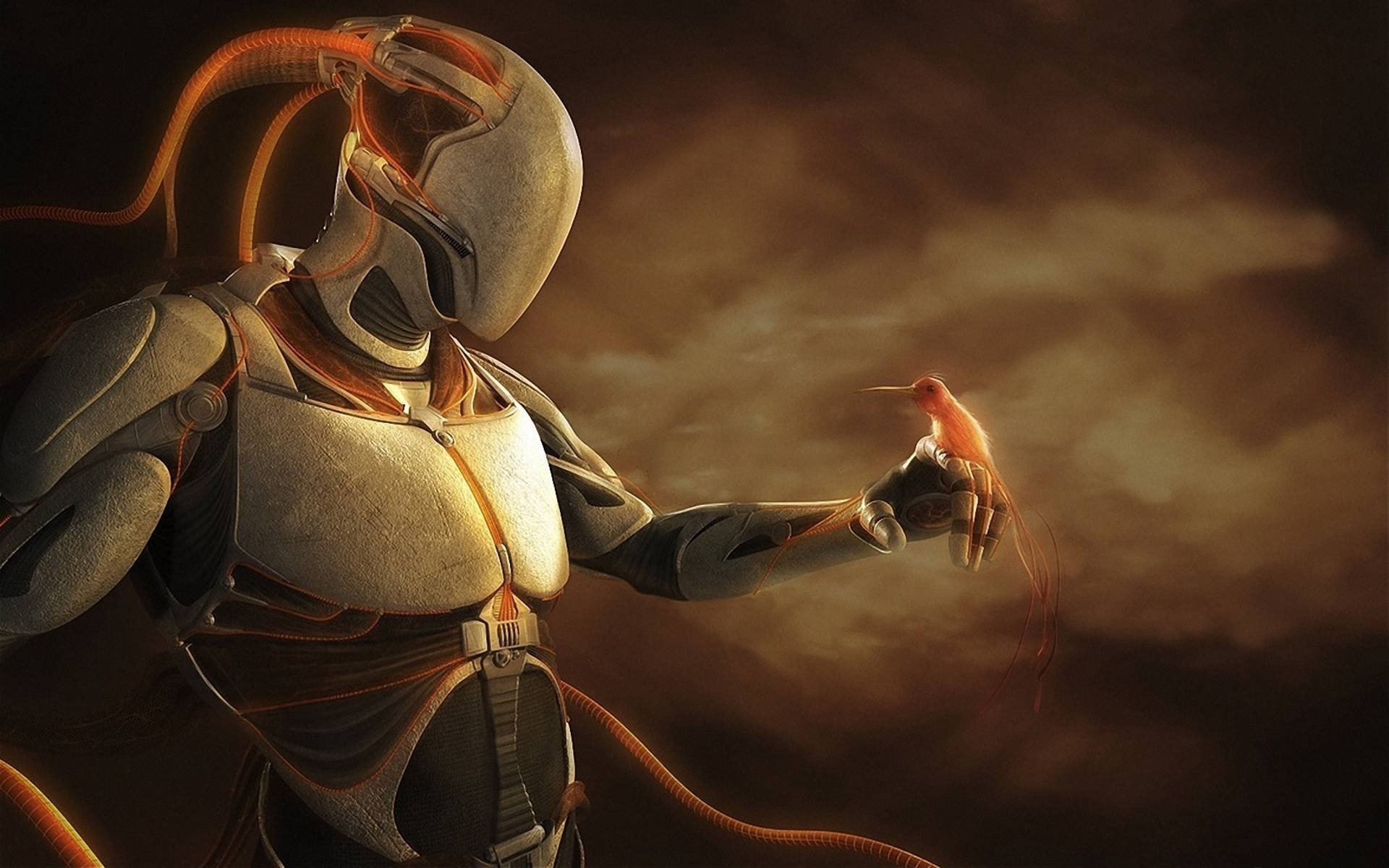 Robot Full HD Wallpaper and Background   1920x1200   ID:232436