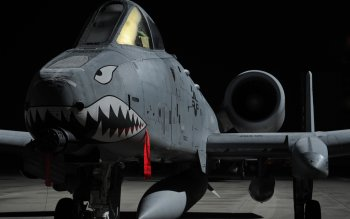 Militärisch - Fairchild Republic A-10 Thunderbolt II Wallpapers and Backgrounds ID : 234476