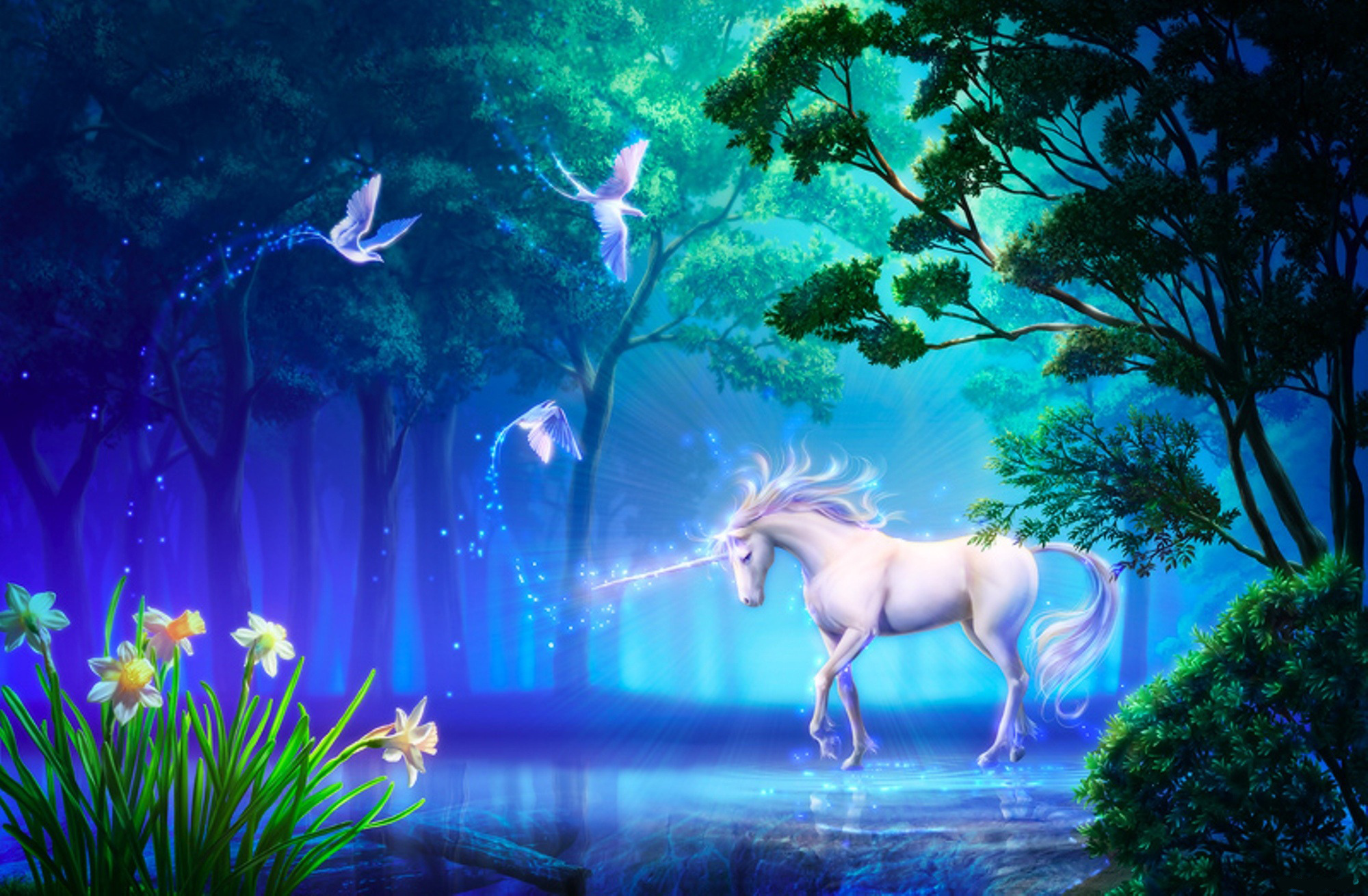 72 unicorn hd wallpapers background images wallpaper abyss hd wallpaper background image id239474 2000x1310 fantasy unicorn voltagebd Images