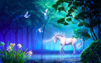 Fantasy - Unicorn Wallpapers and Backgrounds ID : 239474