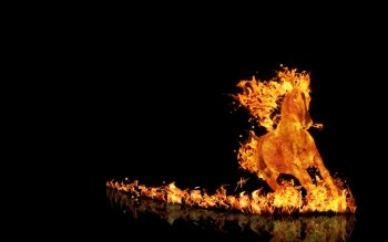 Artistic - Fire Wallpapers and Backgrounds ID : 239768