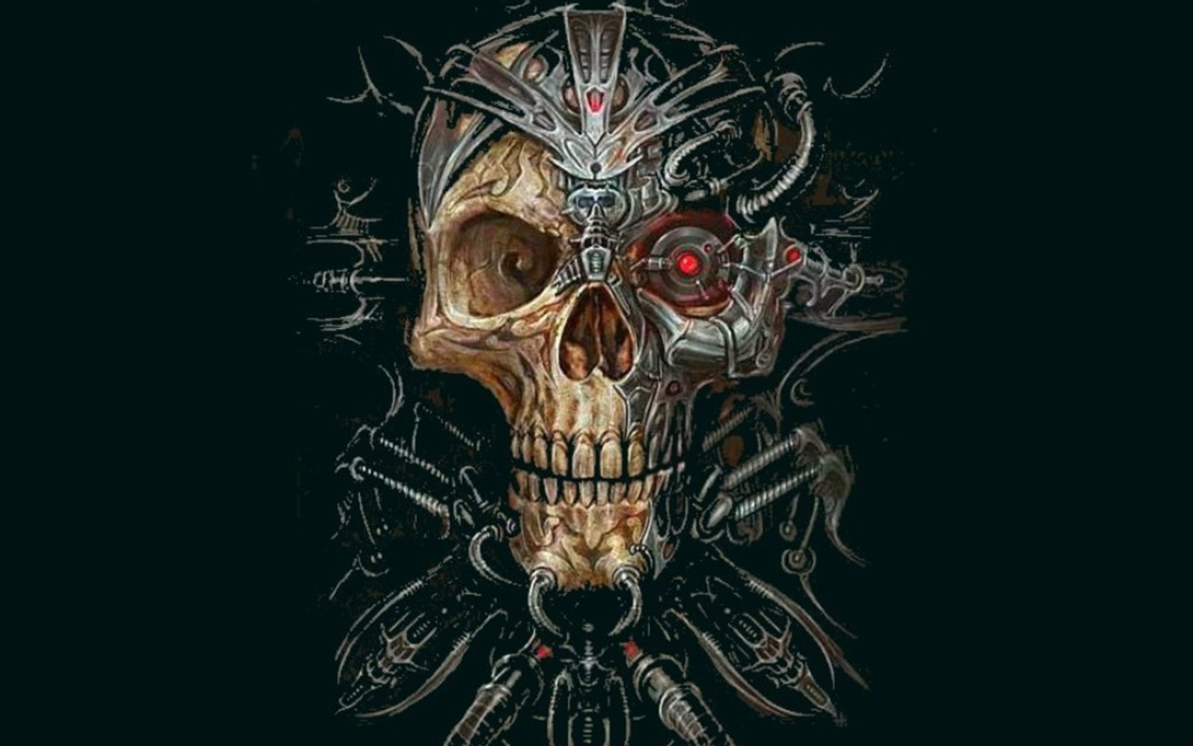 Skull Wallpaper and Background   1680x1050   ID:249836