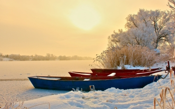 Photography - Winter Wallpapers and Backgrounds ID : 253258
