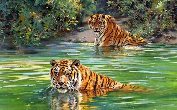 Animal Tiger Cats Jungle Illistration HD Wallpaper   Background Image