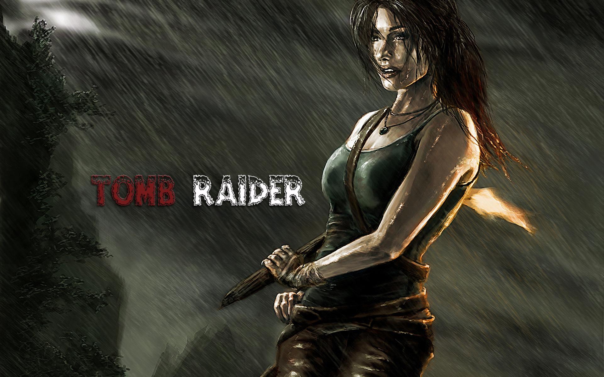 Tomb Raider HD Wallpaper   Background Image   1920x1200 ...