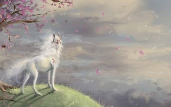 Video Game - Okami Wallpapers and Backgrounds ID : 259424