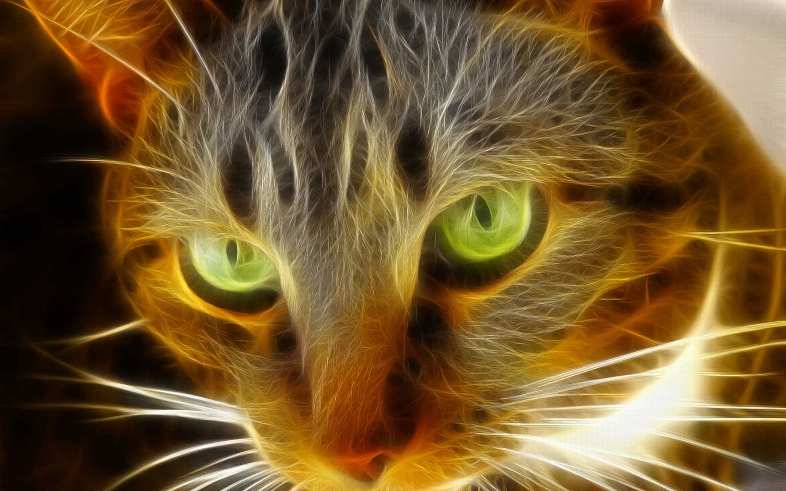 Green eyes full hd wallpaper and background image - Cool backgrounds of cats ...