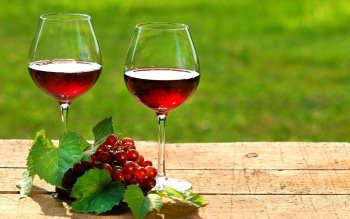 Food - Wine Wallpapers and Backgrounds ID : 262056